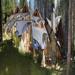 Casa del Bosque Aparts & Suites,  en